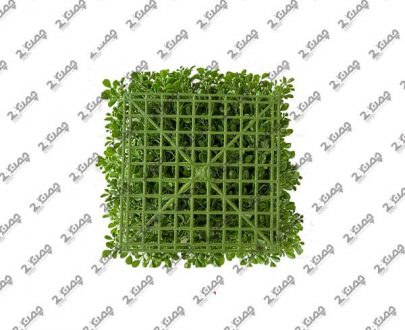 دیوار سبز شبدر